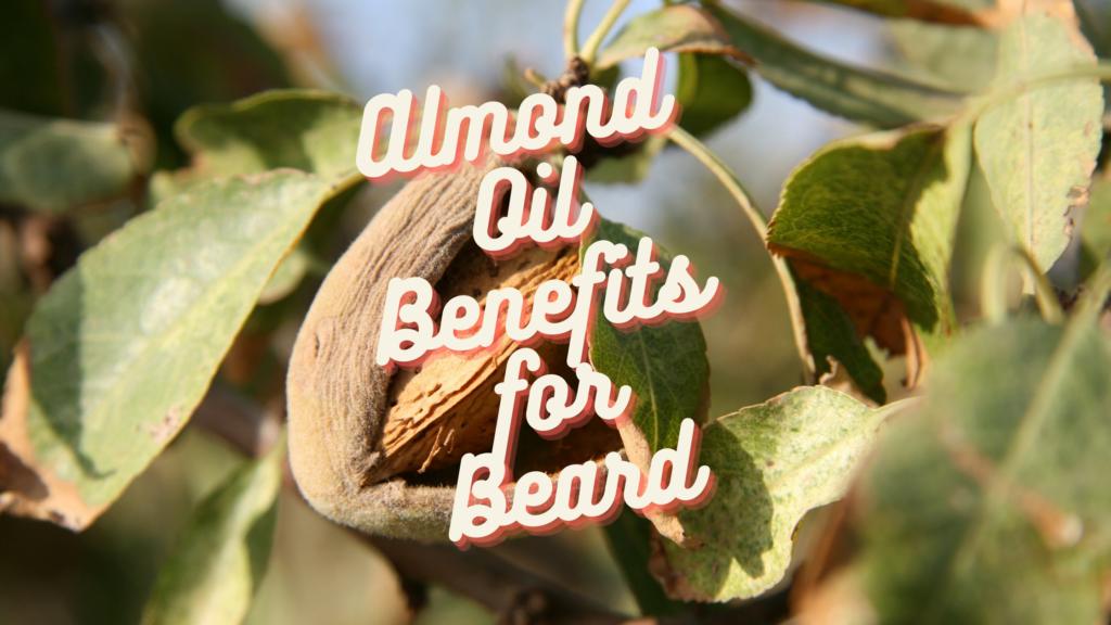 Almond Oil for Beard - Grow Stronger and Soften Beard